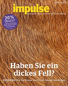 impulse 12/2020 + 01/2021